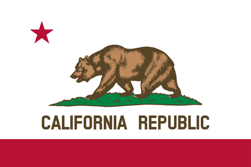 California State Information Symbols Capital Constitution Flags