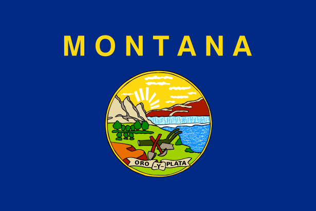 Montana State Information Symbols Capital Constitution Flags