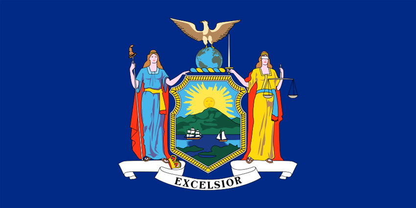 new york state information symbols capital constitution flags
