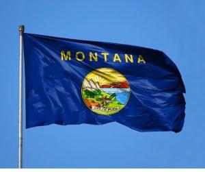 Montana state flag flying