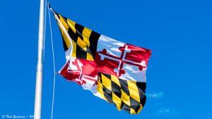 Maryland State Flag flying